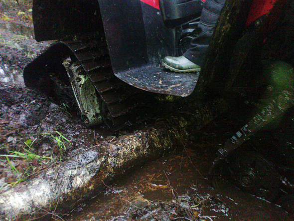 Koka pārvarēšana ar kāpurķēžu kvadraciklu Suzuki KingQuad 700