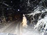 Ziemassvētku Ekspedīcija 2011